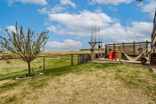 Photo 31: 74 Windcreek Terrace SW: Airdrie Detached for sale : MLS®# A1103759
