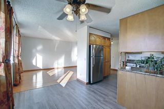 Photo 11: 317 Big Springs Court SE: Airdrie Detached for sale : MLS®# A1152002