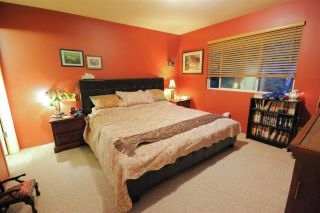 Photo 10: 10062 243A Street in Maple Ridge: Albion House for sale : MLS®# R2578310