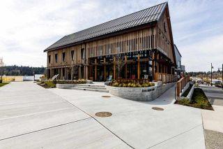 "Photo 24: 278 66 Street in Delta: Boundary Beach House for sale in ""Boundary Beach"" (Tsawwassen)  : MLS®# R2552976"