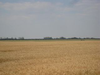 Photo 12: SE 20 30 1 W5 Highway 2A: Carstairs Residential Land for sale : MLS®# A1067588