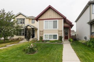 Photo 1: 172 COPPERFIELD Rise SE in Calgary: Copperfield Detached for sale : MLS®# C4201134