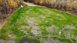Photo 18: #9 North Pigeon Lake Estates: Rural Wetaskiwin County Rural Land/Vacant Lot for sale : MLS®# E4265016