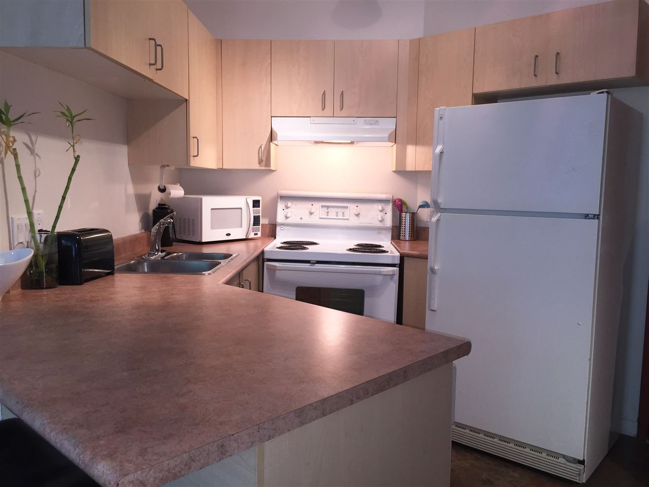 Photo 7: Photos: 219 22 E CORDOVA Street in Vancouver: Downtown VE Condo for sale (Vancouver East)  : MLS®# R2091269