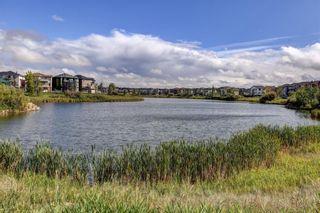 Photo 47: 147 Taracove Landing NE in Calgary: Taradale Detached for sale : MLS®# A1144169