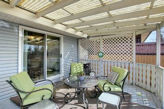 Photo 29: 2735 41A Avenue SE in Calgary: Dover Detached for sale : MLS®# A1082554