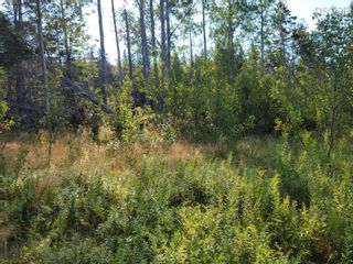 Photo 7: Kempt Head Road in Ross Ferry: 207-C. B. County Vacant Land for sale (Cape Breton)  : MLS®# 202121661
