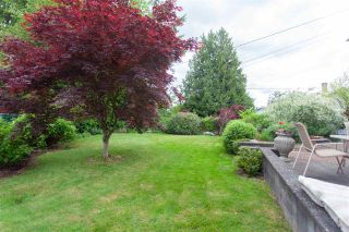 Photo 30: 15116 PHEASANT Drive in Surrey: Bolivar Heights House for sale (North Surrey)  : MLS®# R2583067
