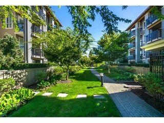 """Photo 15: 215 21009 56 Avenue in Langley: Salmon River Condo for sale in """"Cornerstone"""" : MLS®# R2414162"""