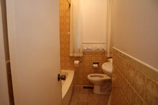 Photo 7: 233 Falstaff Avenue in Toronto: Maple Leaf House (Bungalow) for lease (Toronto W04)  : MLS®# W4304074