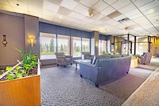 Photo 31: 611 8604 48 Avenue NW in Calgary: Bowness Apartment for sale : MLS®# A1107352