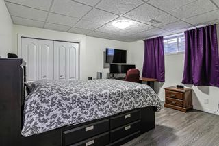 Photo 28: 359 Hillcrest Circle SW: Airdrie Detached for sale : MLS®# A1100580