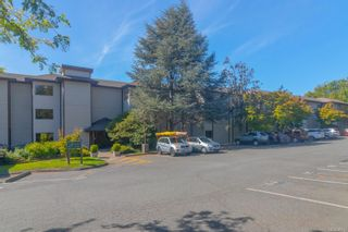 Photo 22: 308 79 W Gorge Rd in : SW Gorge Condo for sale (Saanich West)  : MLS®# 885912