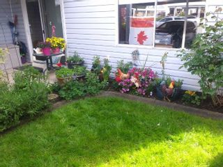 """Photo 10: 239 32691 GARIBALDI Drive in Abbotsford: Abbotsford West Townhouse for sale in """"Carriage Lane"""" : MLS®# R2612779"""
