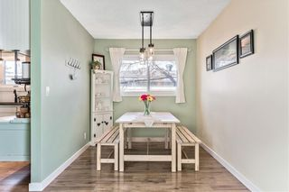 Photo 9: 420 SPRING HAVEN Court SE: Airdrie Detached for sale : MLS®# C4289302