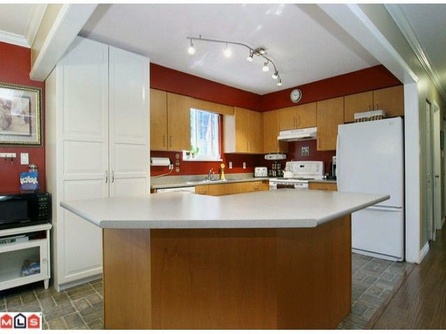 """Photo 3: Photos: 4176 206A Street in Langley: Brookswood Langley House for sale in """"BROOKSWOOD"""" : MLS®# F1121699"""