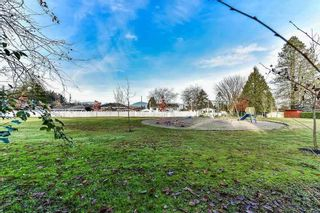 Photo 11: 14685 110A Avenue in Surrey: Bolivar Heights House for sale (North Surrey)  : MLS®# R2365249