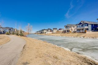 Photo 39: 102 Bayview Circle SW: Airdrie Detached for sale : MLS®# A1090957