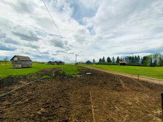 Photo 30: 454064 RGE RD 275: Rural Wetaskiwin County House for sale : MLS®# E4246862