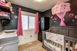 Photo 23: 233 MCCONACHIE Drive in Edmonton: Zone 03 House for sale : MLS®# E4241233