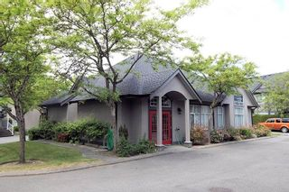 """Photo 16: 14 4740 221 Street in Langley: Murrayville Townhouse for sale in """"Eaglecrest"""" : MLS®# R2273734"""