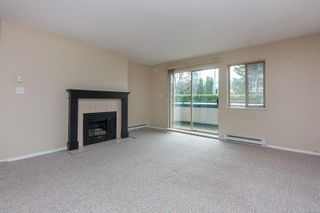Photo 8: 207 1270 Johnson St in : Vi Downtown Condo for sale (Victoria)  : MLS®# 869556