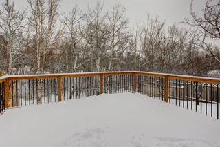Photo 44: 140 Stratton Crescent SW in Calgary: Strathcona Park Detached for sale : MLS®# A1072152