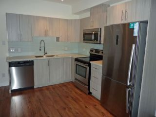 "Photo 3: 214 12070 227 Street in Maple Ridge: East Central Condo for sale in ""STATION ONE"" : MLS®# R2120958"