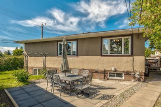 Photo 45: 8248 4A Street SW in Calgary: Kingsland Detached for sale : MLS®# A1142251