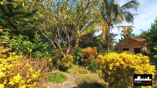 Photo 20: Ocean and beach front House in Costa Esmeralda