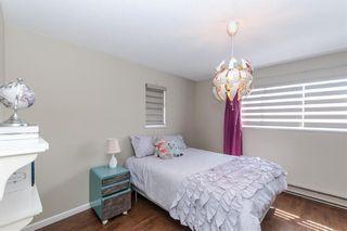 Photo 11: 3631 Georgia Street in Richmond: Steveston Village House for sale : MLS®# R2579009