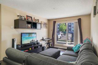Photo 11: 114 3357 16A Avenue in Edmonton: Zone 30 Condo for sale : MLS®# E4248911