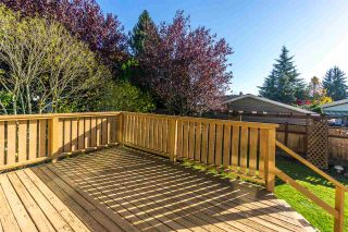 """Photo 16: 15304 85A Avenue in Surrey: Fleetwood Tynehead House for sale in """"Fleetwood"""" : MLS®# R2217891"""