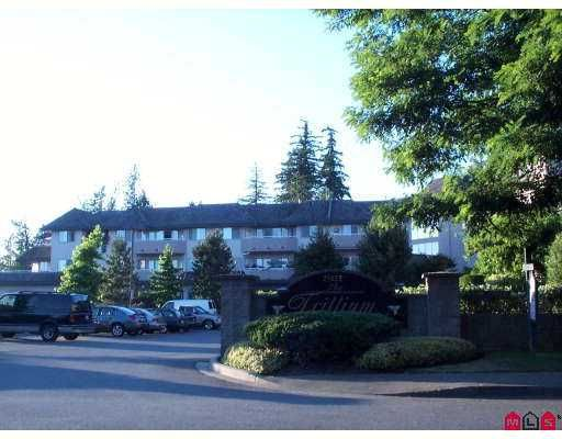 "Main Photo: 110 21975 49TH AV in Langley: Murrayville Condo for sale in ""Trillium"" : MLS®# F2615279"