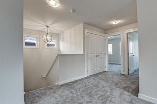 Photo 25: 216 Red Sky Terrace NE in Calgary: Redstone Detached for sale : MLS®# A1125516