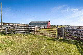 Photo 41: 370004 160 Street W: Rural Foothills County Detached for sale : MLS®# A1145850