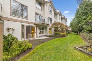 """Photo 1: 11 5575 PATTERSON Avenue in Burnaby: Central Park BS Townhouse for sale in """"ORCHARD COURT"""" (Burnaby South)  : MLS®# R2582794"""