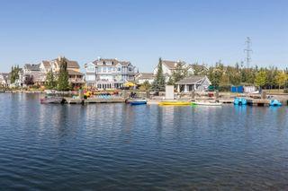 Photo 49: 7119 19A Avenue in Edmonton: Zone 53 House for sale : MLS®# E4263720