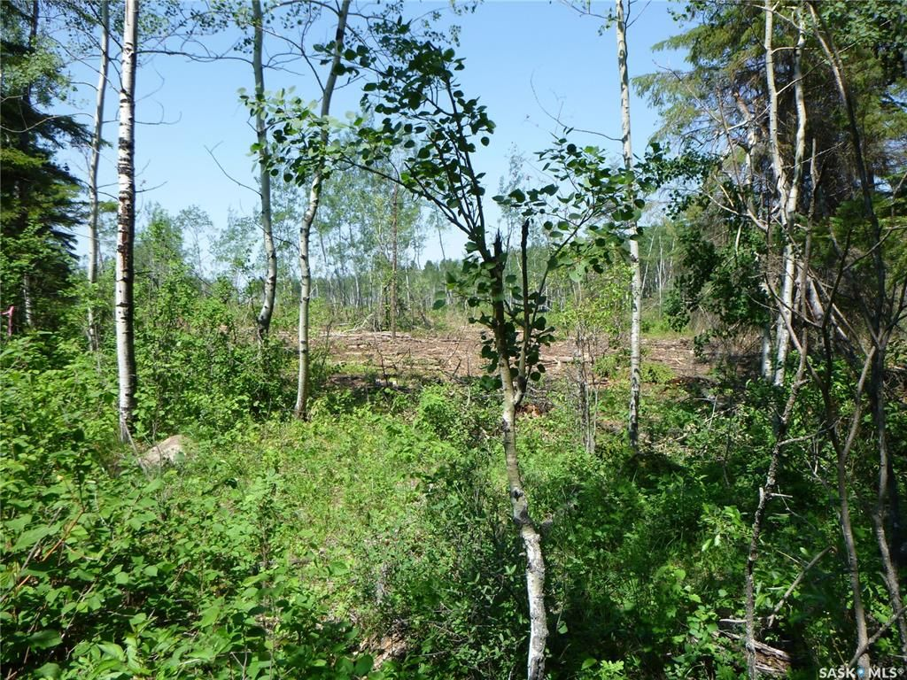 Main Photo: 1 Rural Address in Barrier Valley: Lot/Land for sale (Barrier Valley Rm No. 397)  : MLS®# SK861319