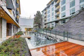 """Photo 18: 311 7428 ALBERTA Street in Vancouver: Mount Pleasant VW Condo for sale in """"Belpark"""" (Vancouver West)  : MLS®# R2568068"""