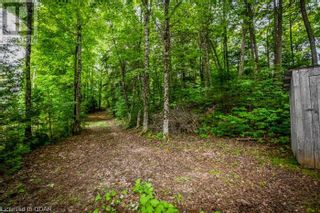 Photo 8: 0 MARKS POINT Road in Bancroft: Vacant Land for sale : MLS®# 40141117