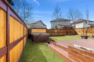 Photo 40: 41 Cranleigh Way SE in Calgary: Cranston Detached for sale : MLS®# A1096562