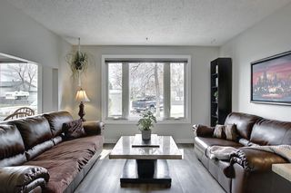 Photo 9: 80 Erin Grove Close SE in Calgary: Erin Woods Detached for sale : MLS®# A1107308