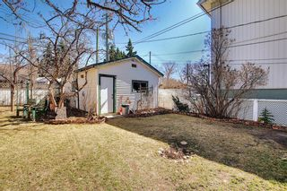 Photo 45: 116 Bowers Street NE: Airdrie Detached for sale : MLS®# A1095413