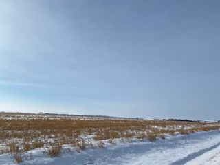 Photo 5: 26008 TWP RD 543: Rural Sturgeon County Rural Land/Vacant Lot for sale : MLS®# E4227167