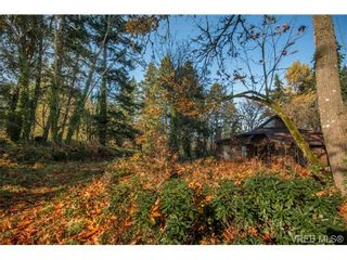 Photo 7: 6586 West Saanich Rd in SAANICHTON: CS Brentwood Bay House for sale (Central Saanich)  : MLS®# 716428