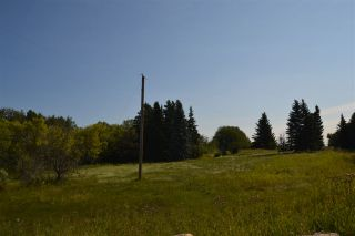 Photo 5: 54325 RR 255: Rural Sturgeon County Rural Land/Vacant Lot for sale : MLS®# E4235892