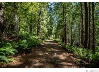 Photo 12: 684 Whaletown Rd in Cortes Island: Isl Cortes Island House for sale (Islands)  : MLS®# 834252