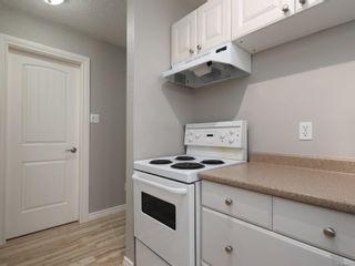 Photo 6: 312 3235 Quadra St in : SE Maplewood Condo for sale (Saanich East)  : MLS®# 864051