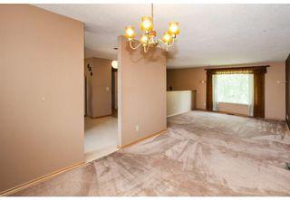 Photo 11: 1715 58 Street NE in Calgary: Pineridge Detached for sale : MLS®# A1140401